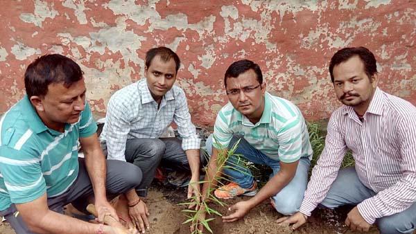 बालाजी चैरिटेबल ट्रस्ट (रजि) द्वारा पौधरोपण कार्यक्रम आयोजित किया गया