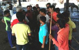 भारतीय जनता युवा मोर्चा  टीम ने चलाया नन्दीग्राम गौशाला में सफाई अभियान